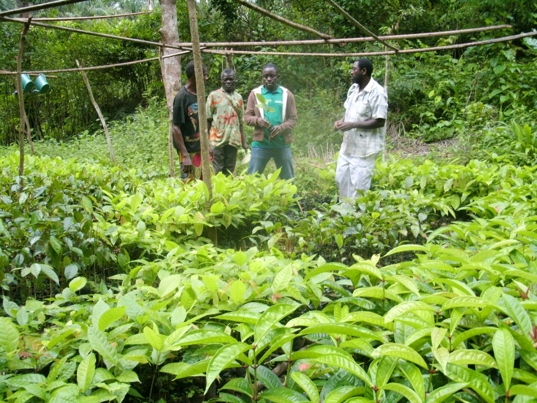Environmental Conservation Assistant