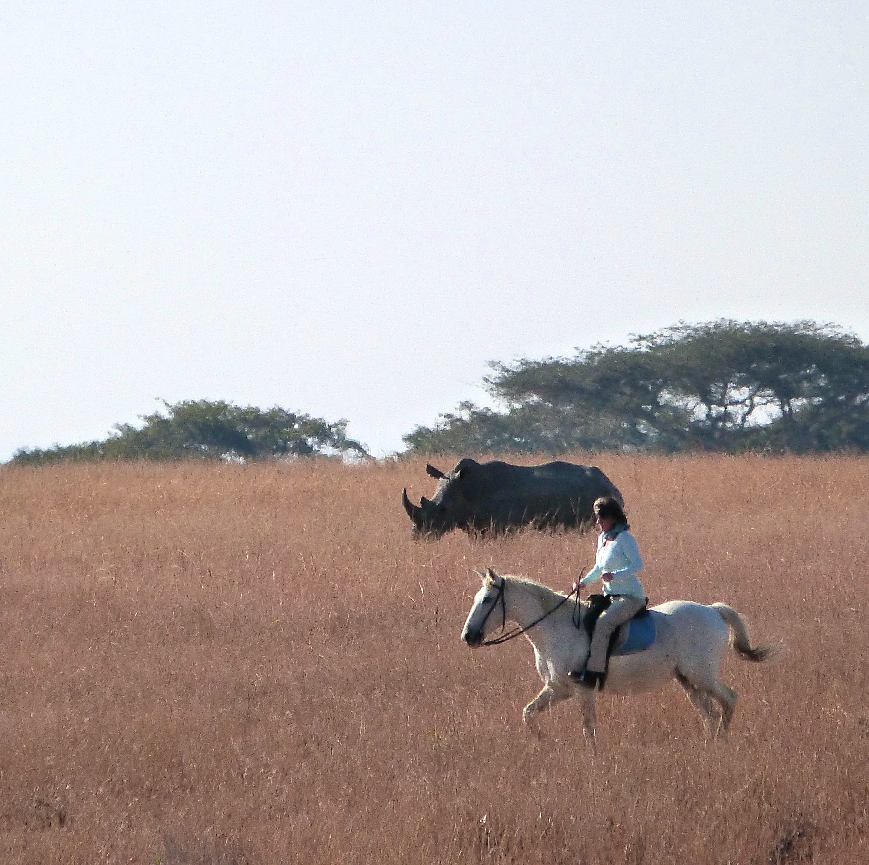 Horse Riding & Wildlife Conservation
