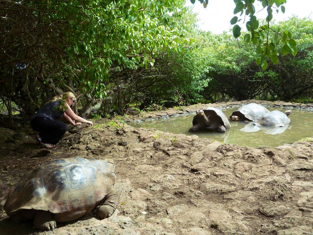 Caretaker in Amazon Wildlife Rescue Center