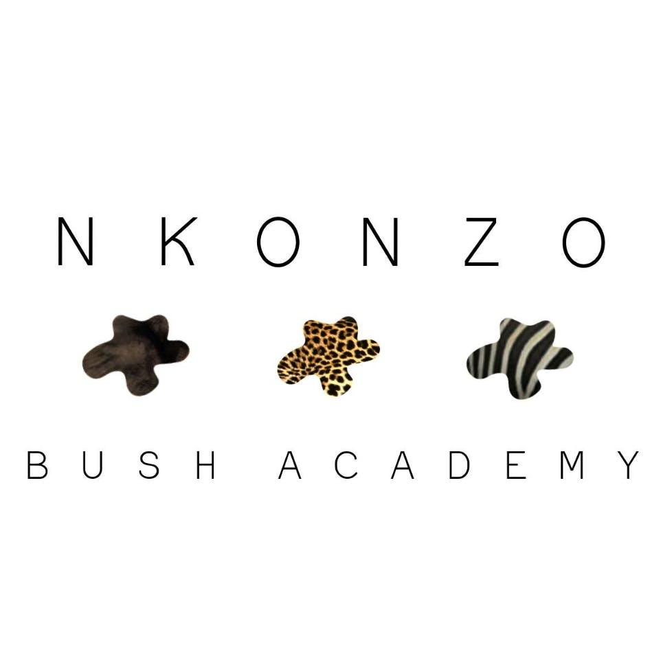 Nkonzo Bush Academy