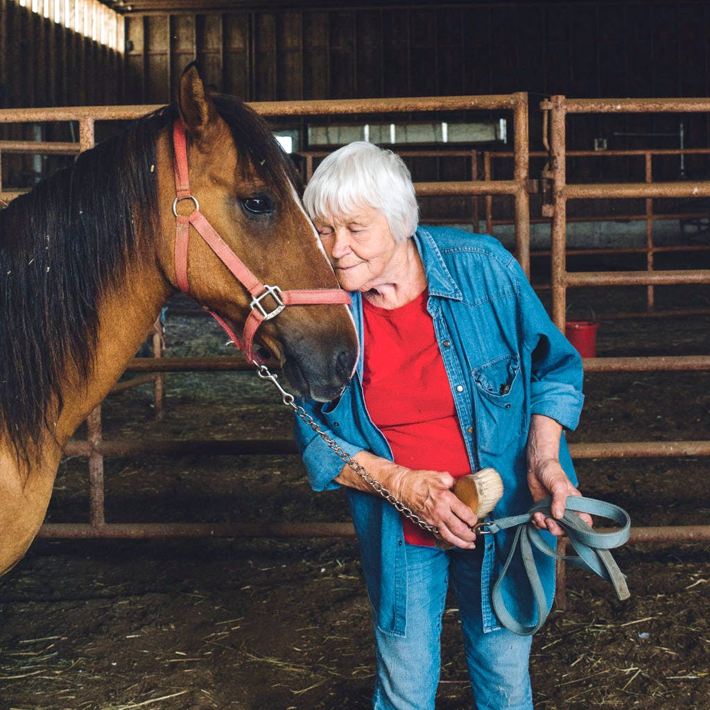 Wild Mustangs Rescue & Rehab Caretaker