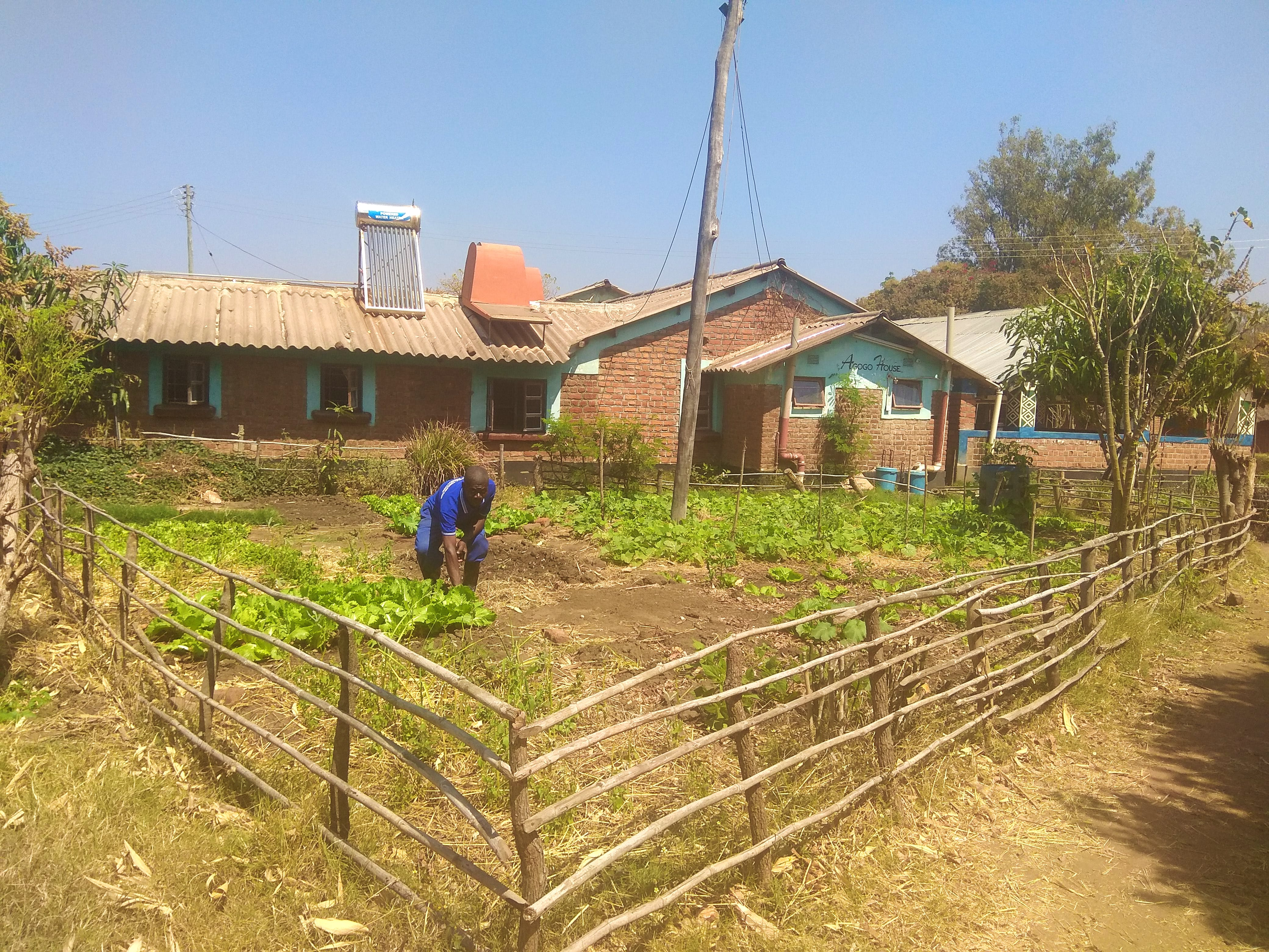 Assistant in Agriculture Initiative