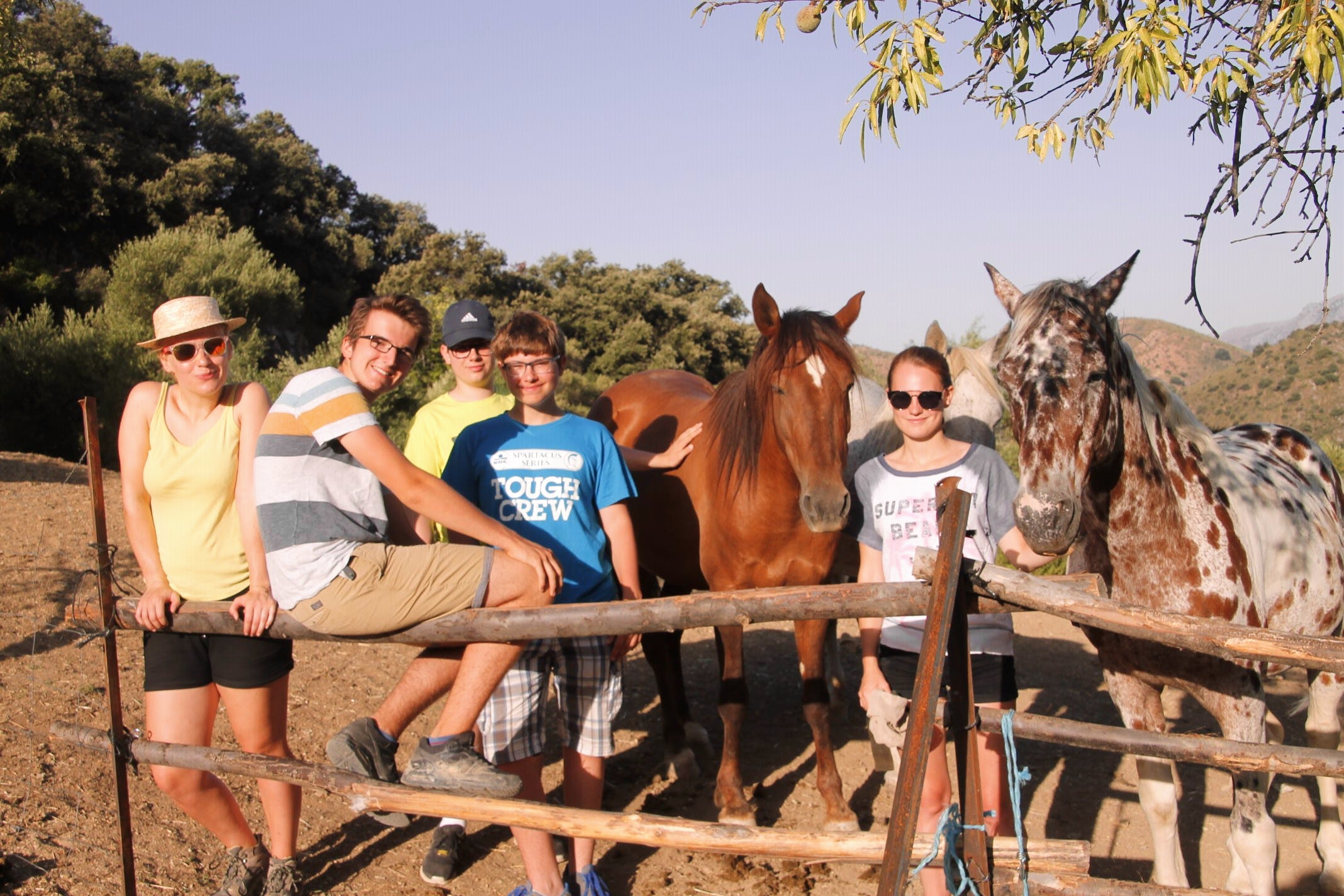 Horse Sanctuary Group Experience