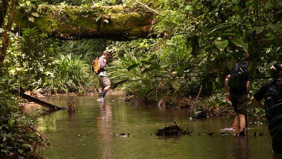Wildlife Photography & Conservation Awareness