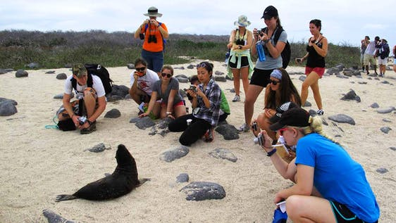 Ecotourism Intern