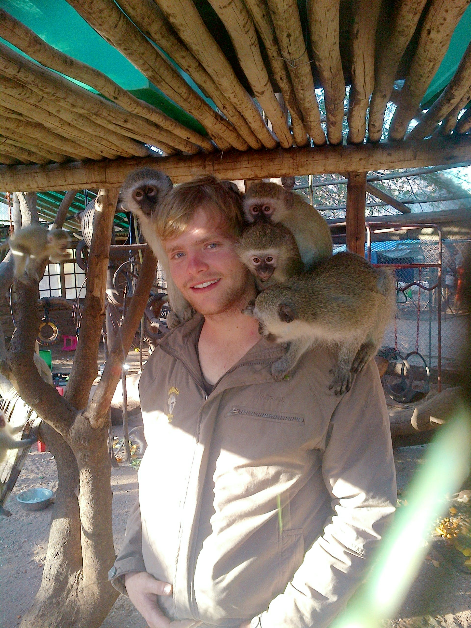 Vervet Monkey Rescue