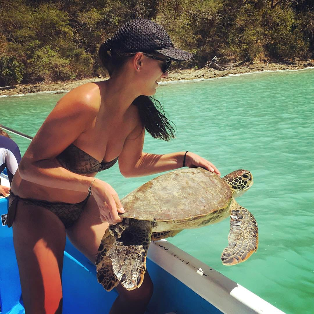 Sea Turtle and Ray Conservation Assistant
