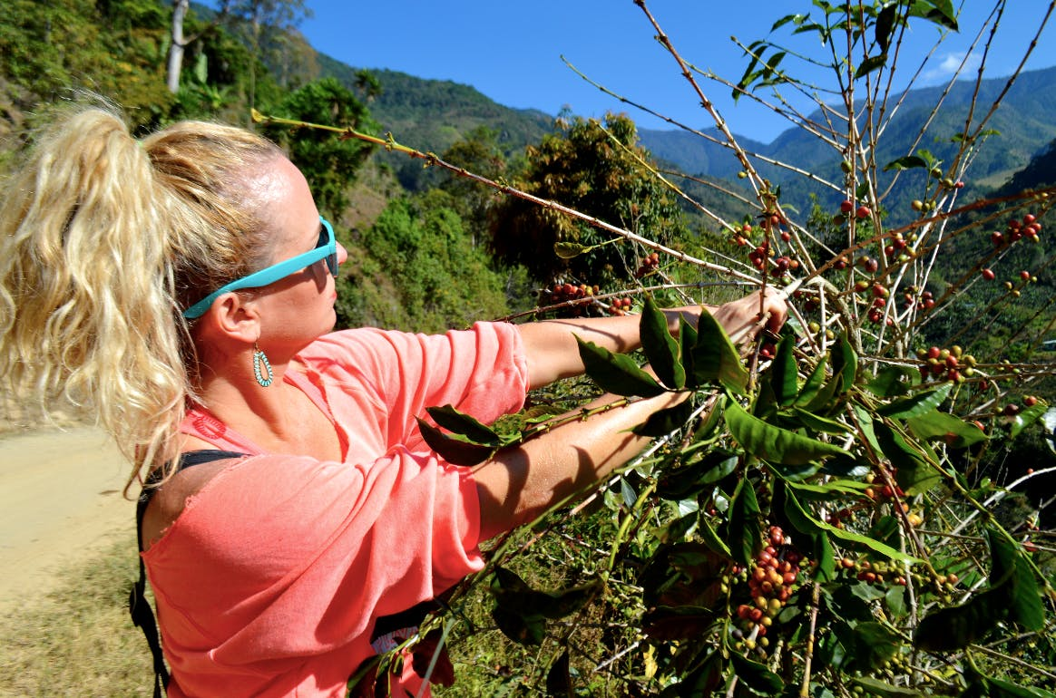 Support a local Organic Coffee Farm