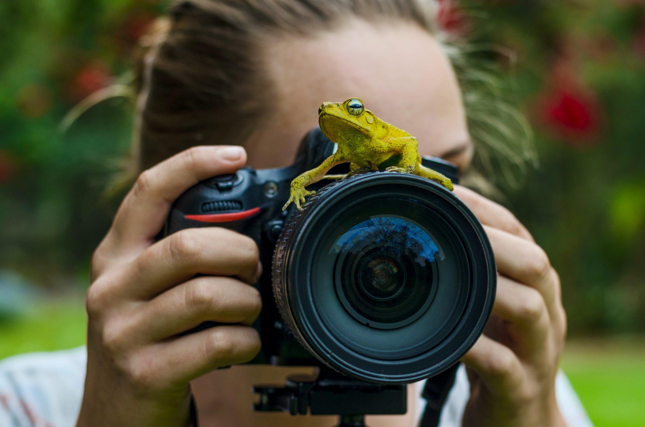 Photographers/Movie Producers