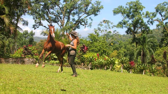 Natural Horsemanship Student